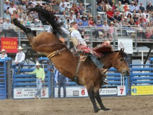 Ranch Vacation Or Gap Year Holiday Off Ranch Activities To