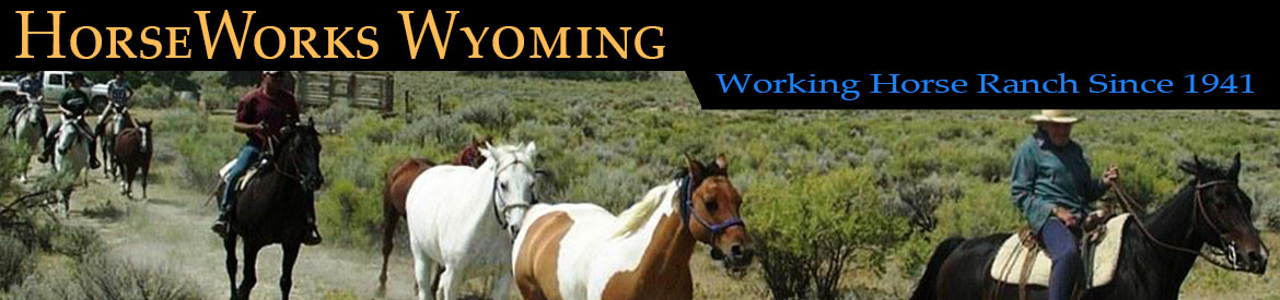 HorseWorks Wyoming USA Since 1941