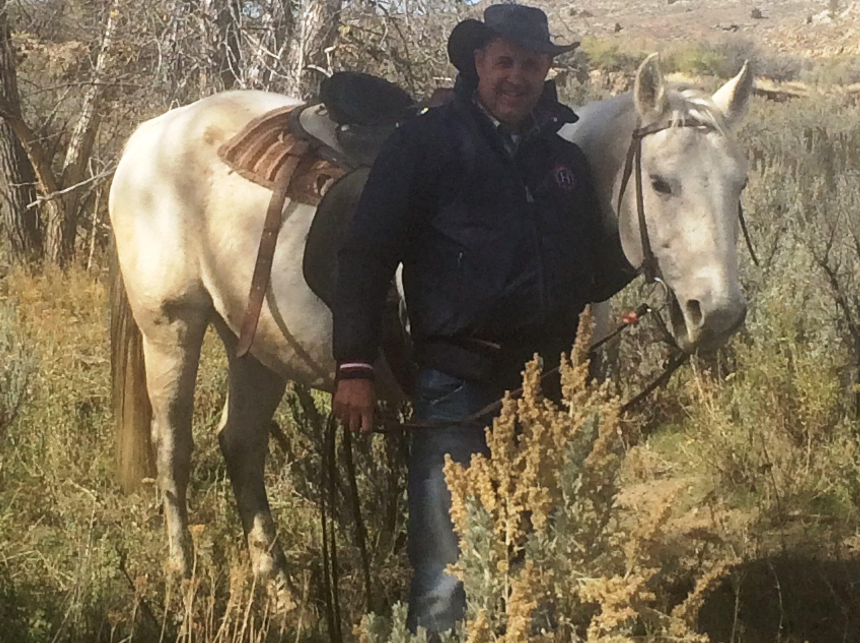 Horses_IMG_4458_PhilTucker-a-e1478298937163