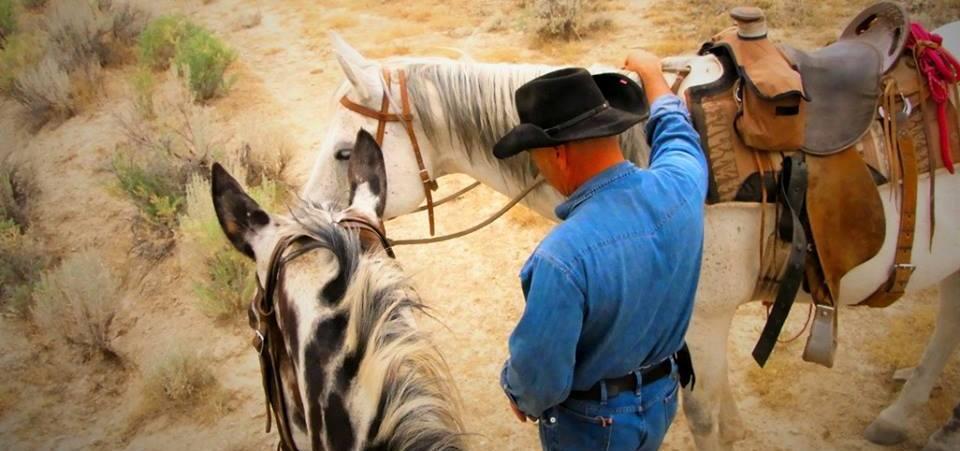 Horse_TuckerPaul-revslider