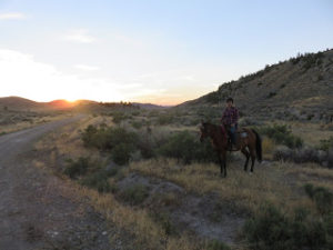 Gap Year Cowgirl sunrise ride at HorseWorks Wyoming